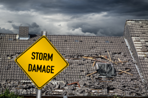 ProFloridian Public Adjusters in Fort Lauderdale