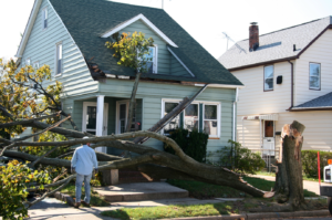 ProFloridian Public Adjusters in Palm Bay